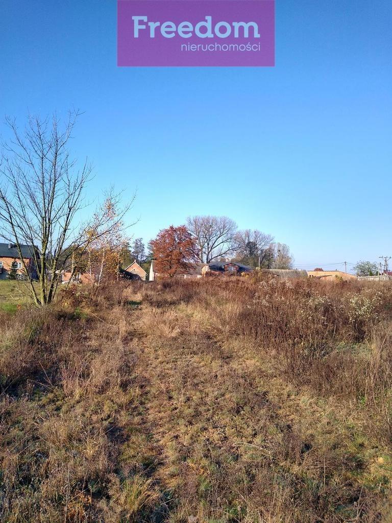 Działka budowlana na sprzedaż Huta Wiskicka  2681m2 Foto 7