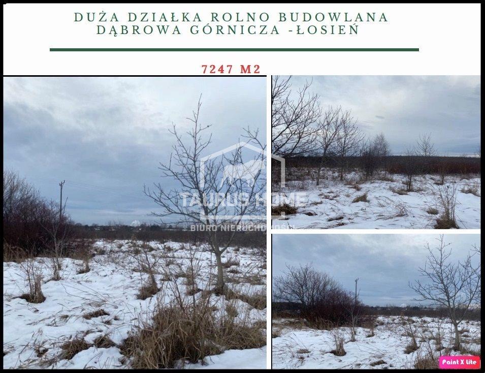Działka budowlana na sprzedaż Dąbrowa Górnicza, Łosień  7247m2 Foto 1