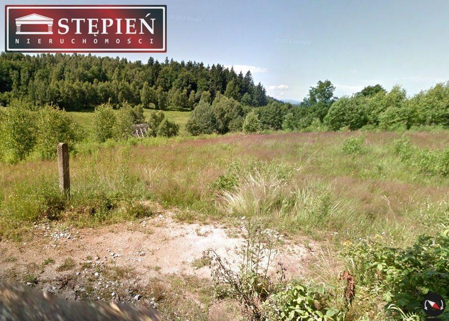 Działka budowlana na sprzedaż Jelenia Góra  2512m2 Foto 2
