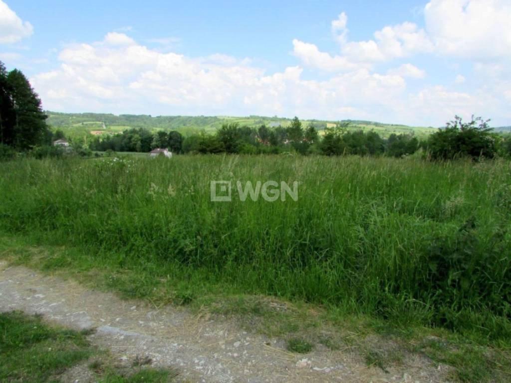 Działka budowlana na sprzedaż Nowy Borek, Nowy Borek, Nowy Borek  7836m2 Foto 6