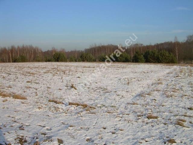 Działka rolna na sprzedaż Stanisławów  3000m2 Foto 3