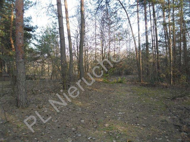 Działka rolna na sprzedaż Stanisławów  21520m2 Foto 6
