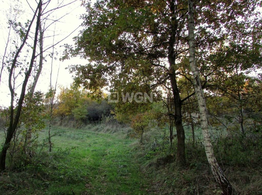 Działka rolna na sprzedaż Wola Rafałowska, Wola Rafałowska, Wola Rafałowska  5400m2 Foto 5