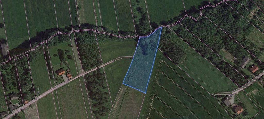 Działka rolna na sprzedaż Trąbki  5600m2 Foto 3