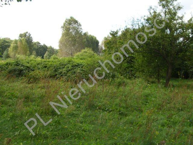 Działka budowlana na sprzedaż Żelechów  1398m2 Foto 3