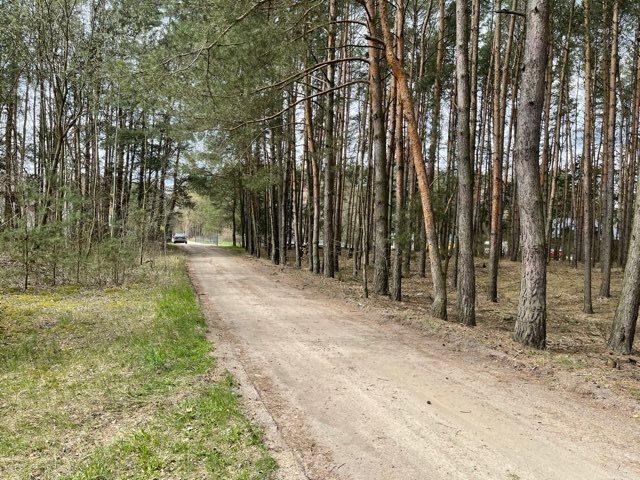Działka leśna na sprzedaż Rządza  6198m2 Foto 5