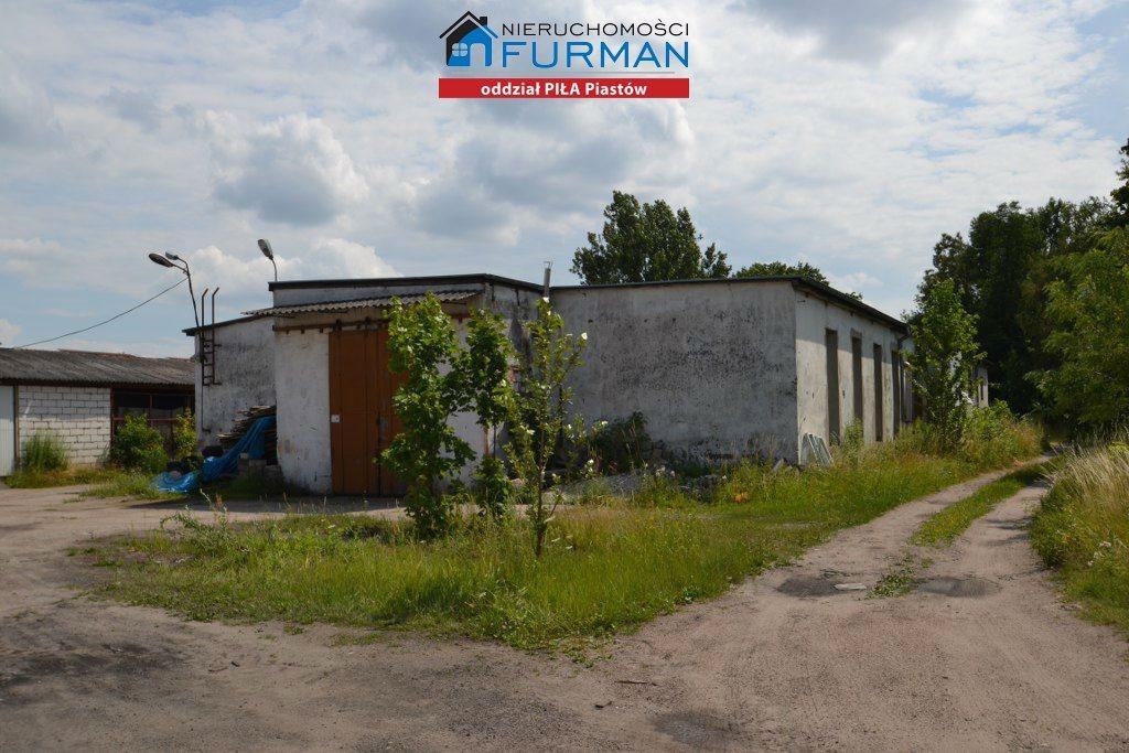 Lokal użytkowy na sprzedaż Piła, Staszyce  3210m2 Foto 8