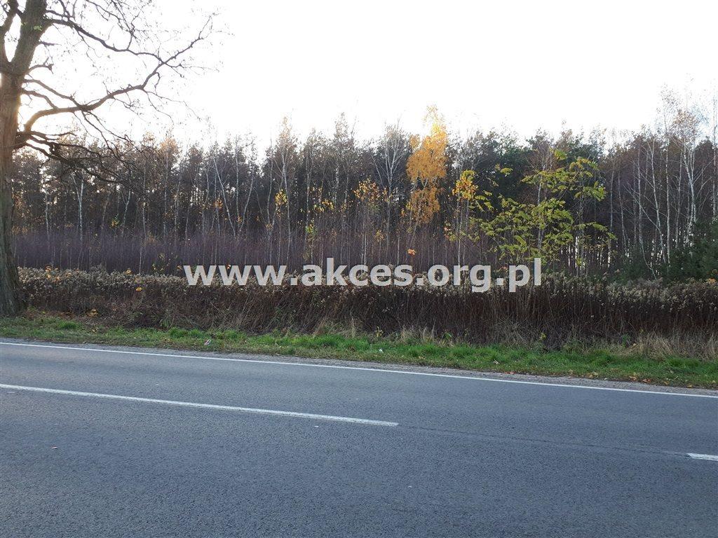 Działka leśna na sprzedaż Nowy Prażmów  17600m2 Foto 5