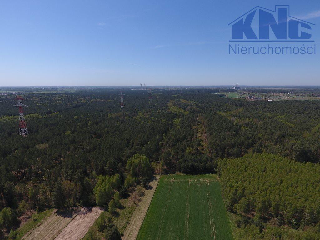 Działka leśna na sprzedaż Laskowiec  5400m2 Foto 2