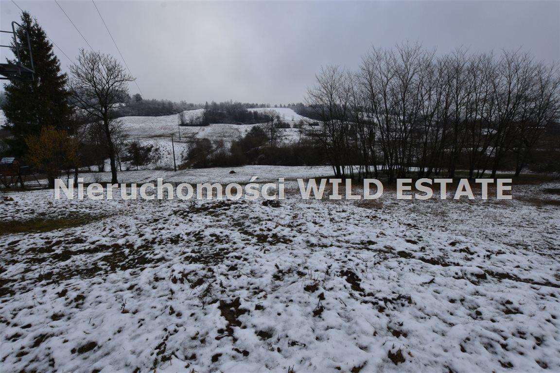Działka rolna na sprzedaż Paszowa  4002m2 Foto 1