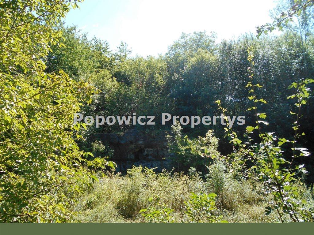 Działka rekreacyjna na sprzedaż Przemyśl, Grota Roweckiego  7892m2 Foto 7