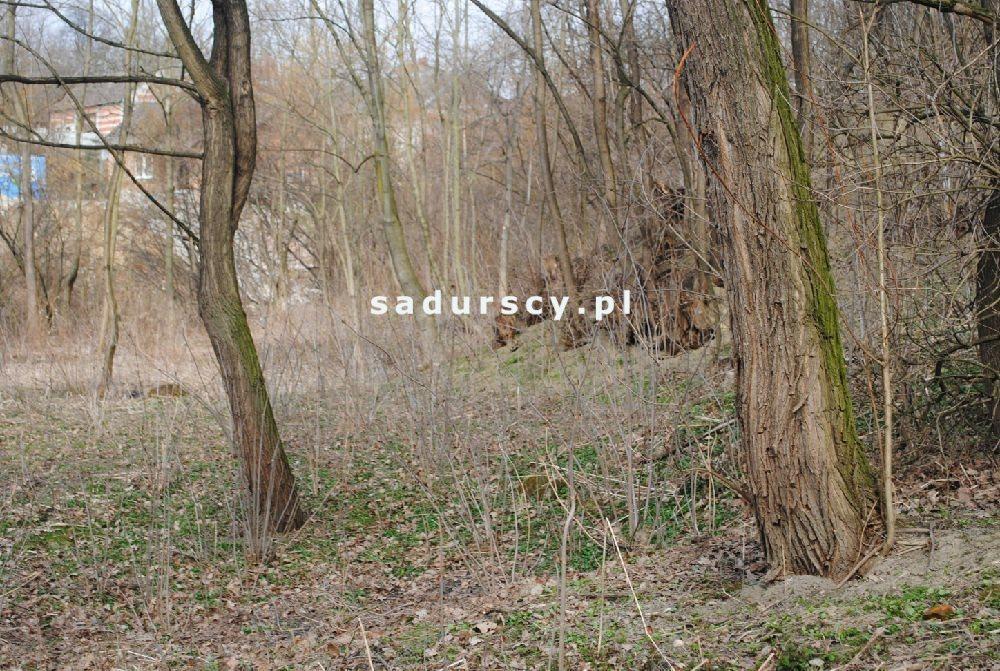 Działka leśna na sprzedaż Malkowice  4800m2 Foto 4