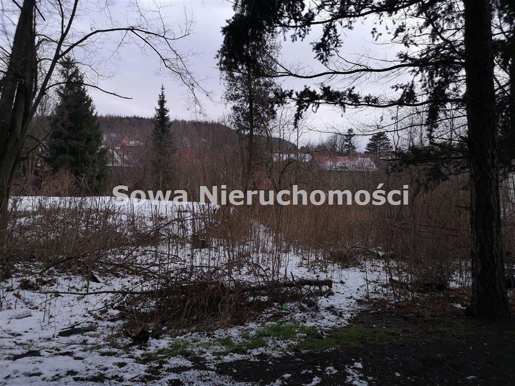 Działka inna na sprzedaż Wałbrzych, Biały Kamień  6000m2 Foto 6
