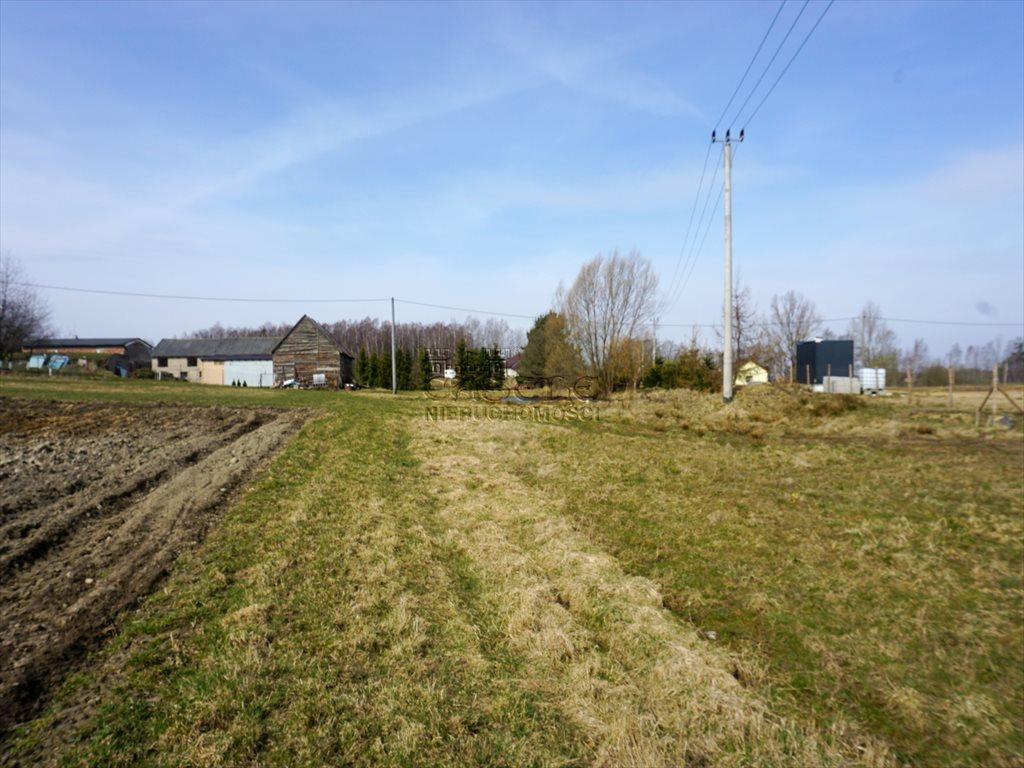 Działka rolna na sprzedaż Rąb  1033m2 Foto 5