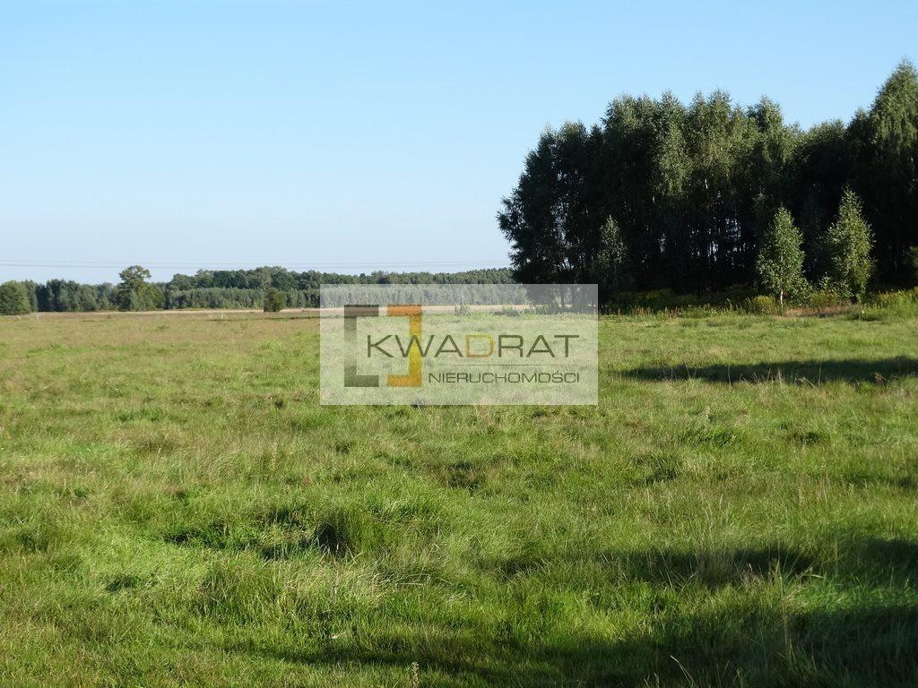 Działka rolna na sprzedaż Brzozowica  36300m2 Foto 3