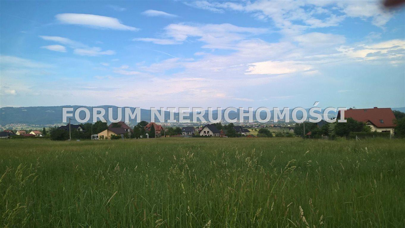 Działka rolna na sprzedaż Słotwina  1000m2 Foto 5