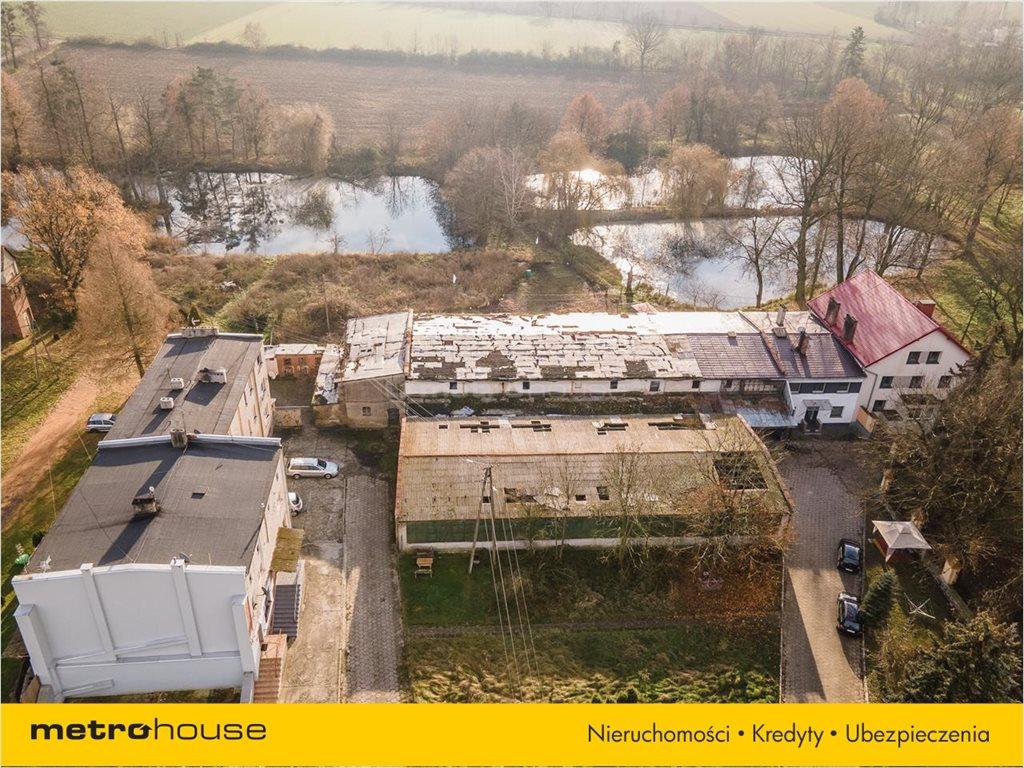 Działka budowlana na sprzedaż Bogdańczowice, Kluczbork  47700m2 Foto 9