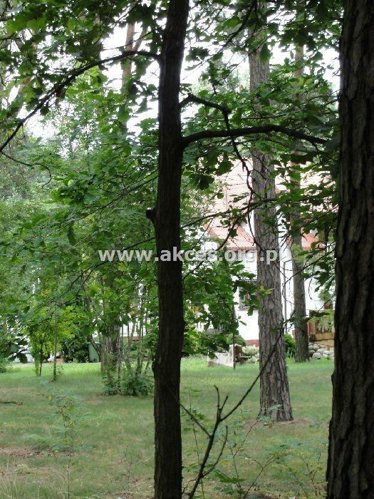 Lokal użytkowy na sprzedaż Baniocha  1000m2 Foto 1