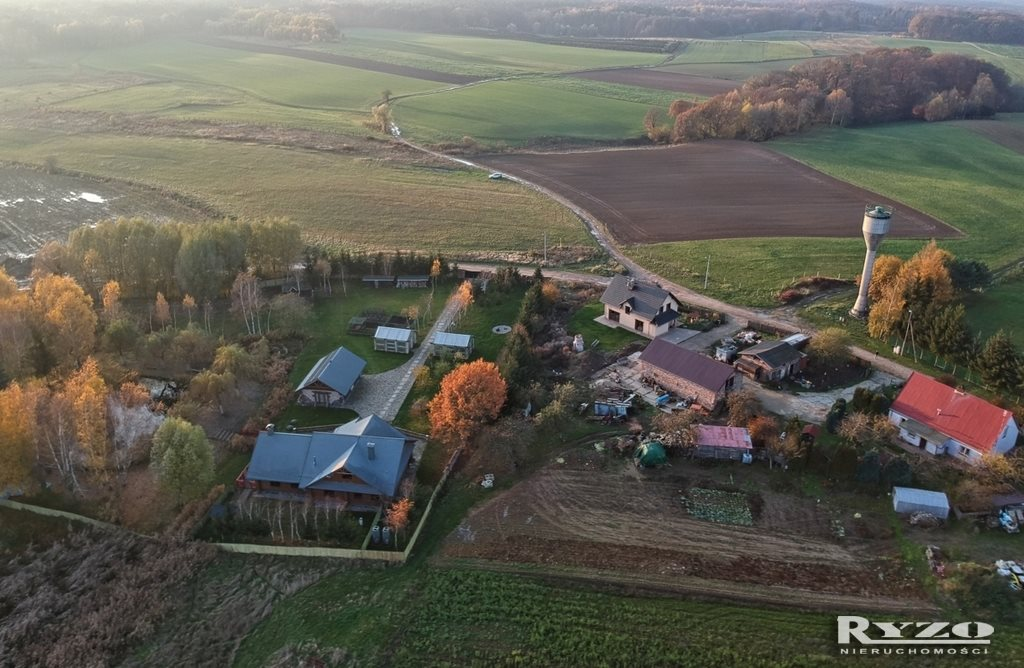 Działka rolna na sprzedaż Przęsocin  12800m2 Foto 6