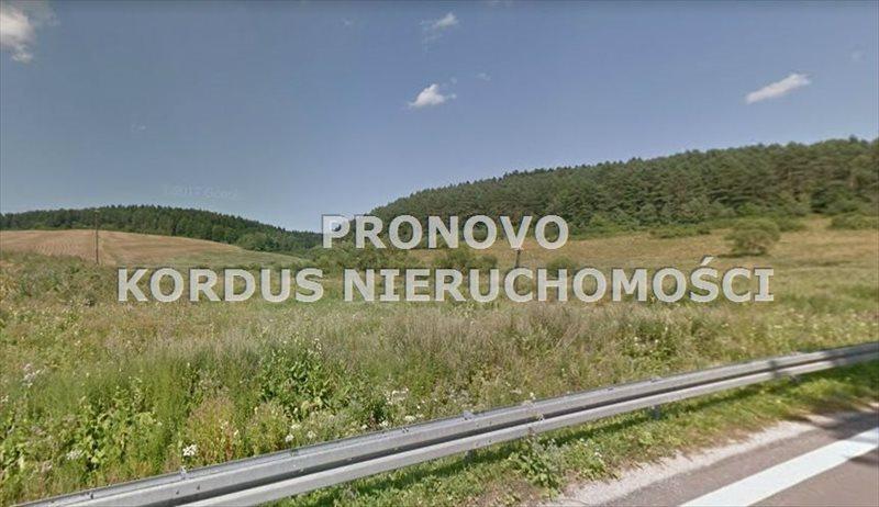 Działka leśna na sprzedaż Wojtkowa, Trzcianiec  1958400m2 Foto 7