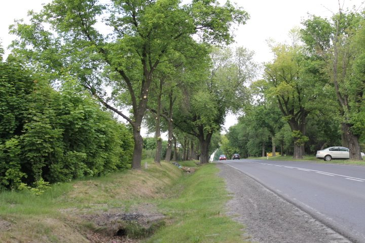 Działka rolna na sprzedaż Skotniki  17600m2 Foto 2