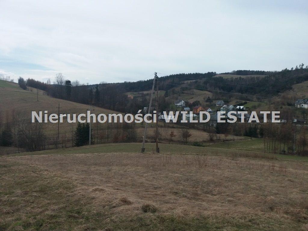 Działka rolna na sprzedaż Solina, Wola Matiaszowa  14500m2 Foto 3