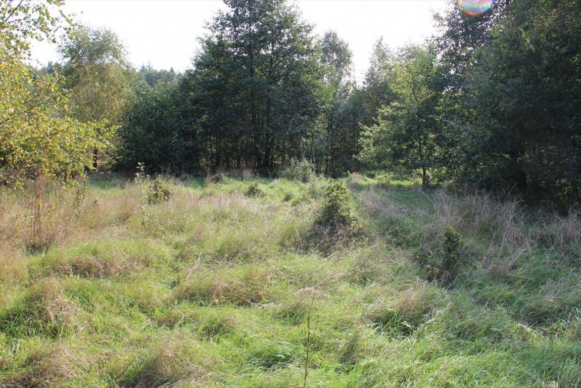 Działka rolna na sprzedaż Salinko  17808m2 Foto 6