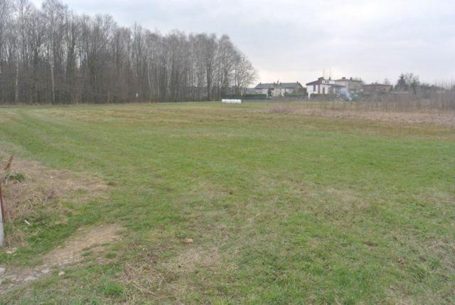 Działka budowlana na sprzedaż Mikołów, Borowa Wieś  2256m2 Foto 5