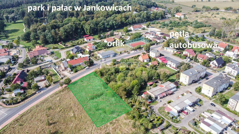 Działka budowlana na sprzedaż Jankowice, Wiśniowa  2100m2 Foto 2