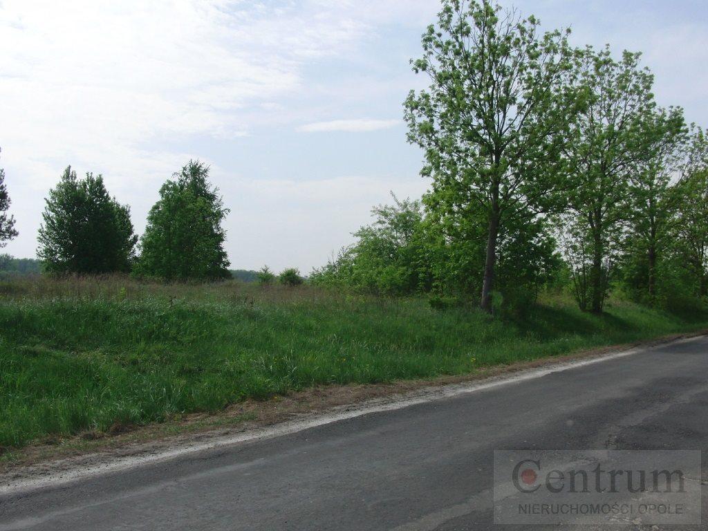 Działka rolna na sprzedaż Opole, Żerkowice  3180m2 Foto 4