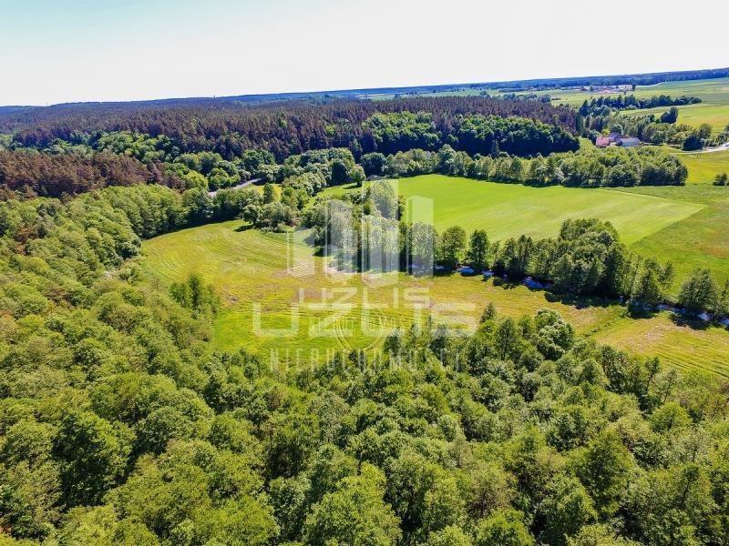 Działka rolna na sprzedaż Czarnocin  5900m2 Foto 5