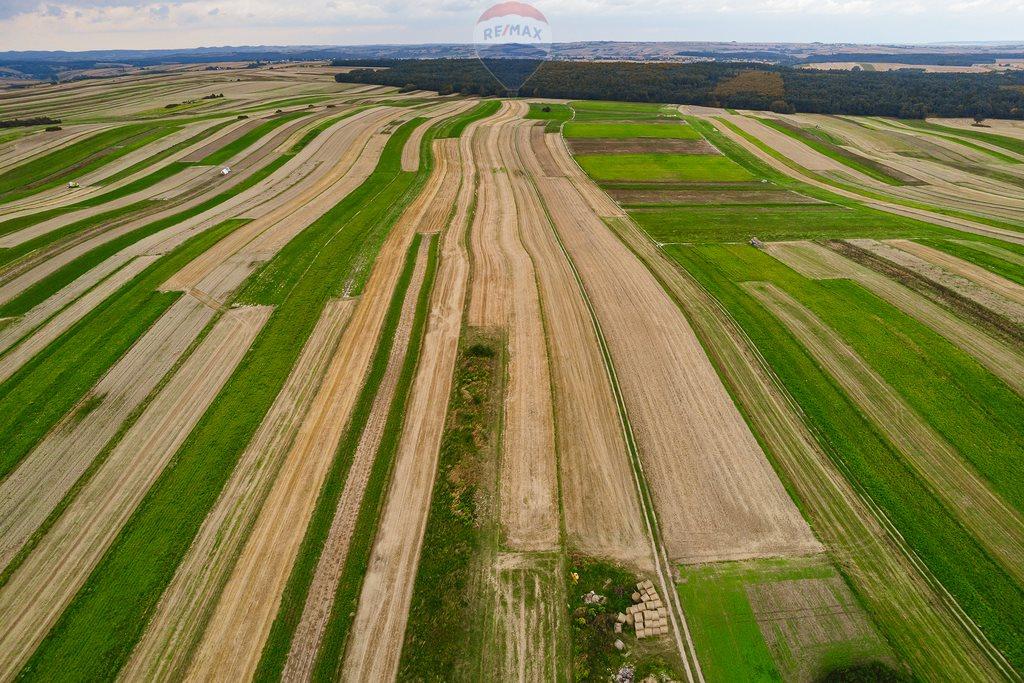 Działka rolna na sprzedaż Sułoszowa  14190m2 Foto 4