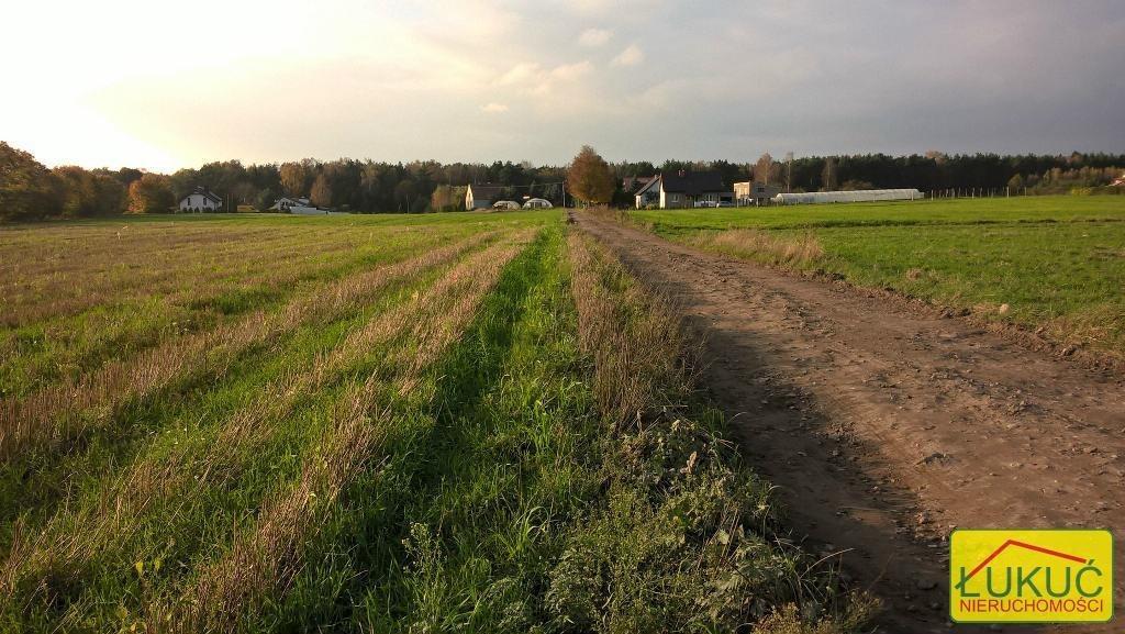 Działka rolna na sprzedaż Żołędowo, Pod Lasem  875m2 Foto 3