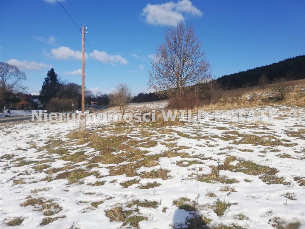 Działka budowlana na sprzedaż Ustrzyki Dolne, Krościenko  4000m2 Foto 1
