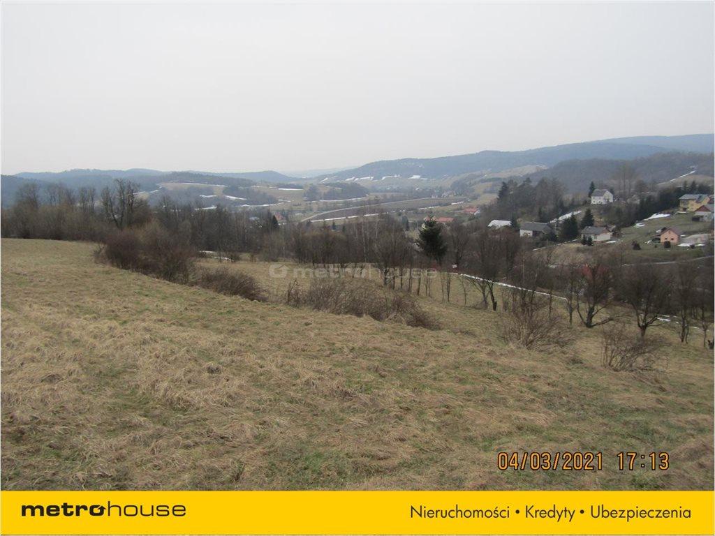 Działka rolna na sprzedaż Morochów, Zagórz  10000m2 Foto 10