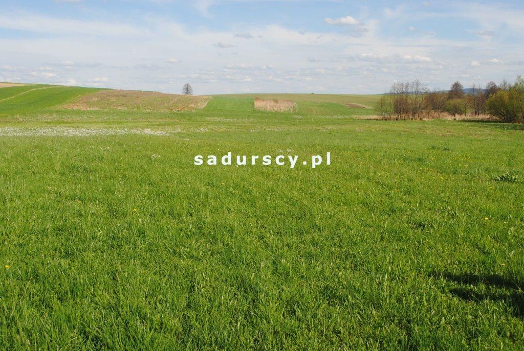 Działka rolna na sprzedaż Ściborzyce  34334m2 Foto 6