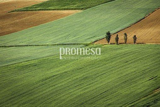 Działka rolna na sprzedaż Brzezia Łąka, Długołęka  16900m2 Foto 2