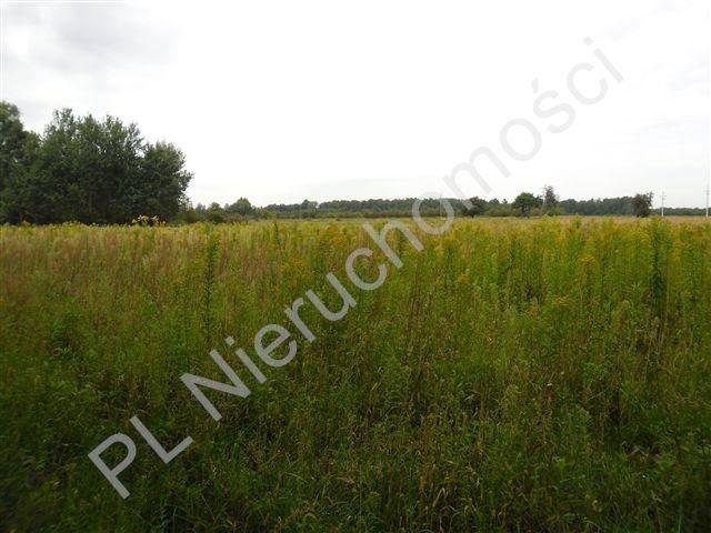 Działka rolna na sprzedaż Olesin  1370m2 Foto 3