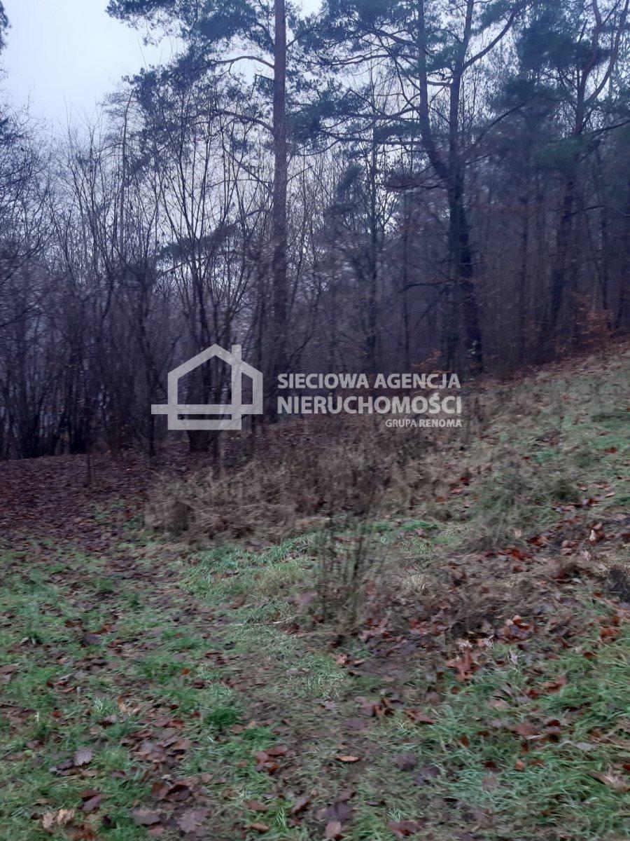Działka leśna na sprzedaż Nowa Karczma, Kamiony  2605m2 Foto 6