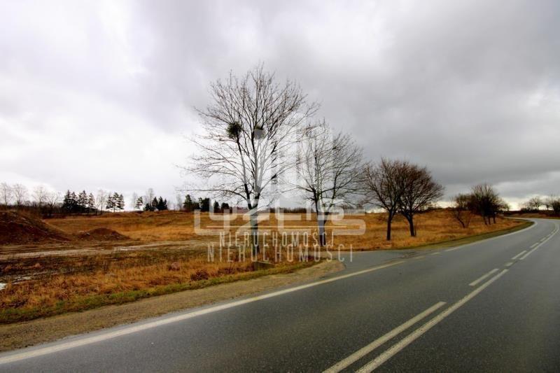 Działka inna na sprzedaż Nowa Wieś  60000m2 Foto 6