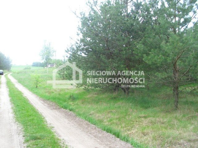 Działka siedliskowa na sprzedaż Miedzno  4564m2 Foto 7