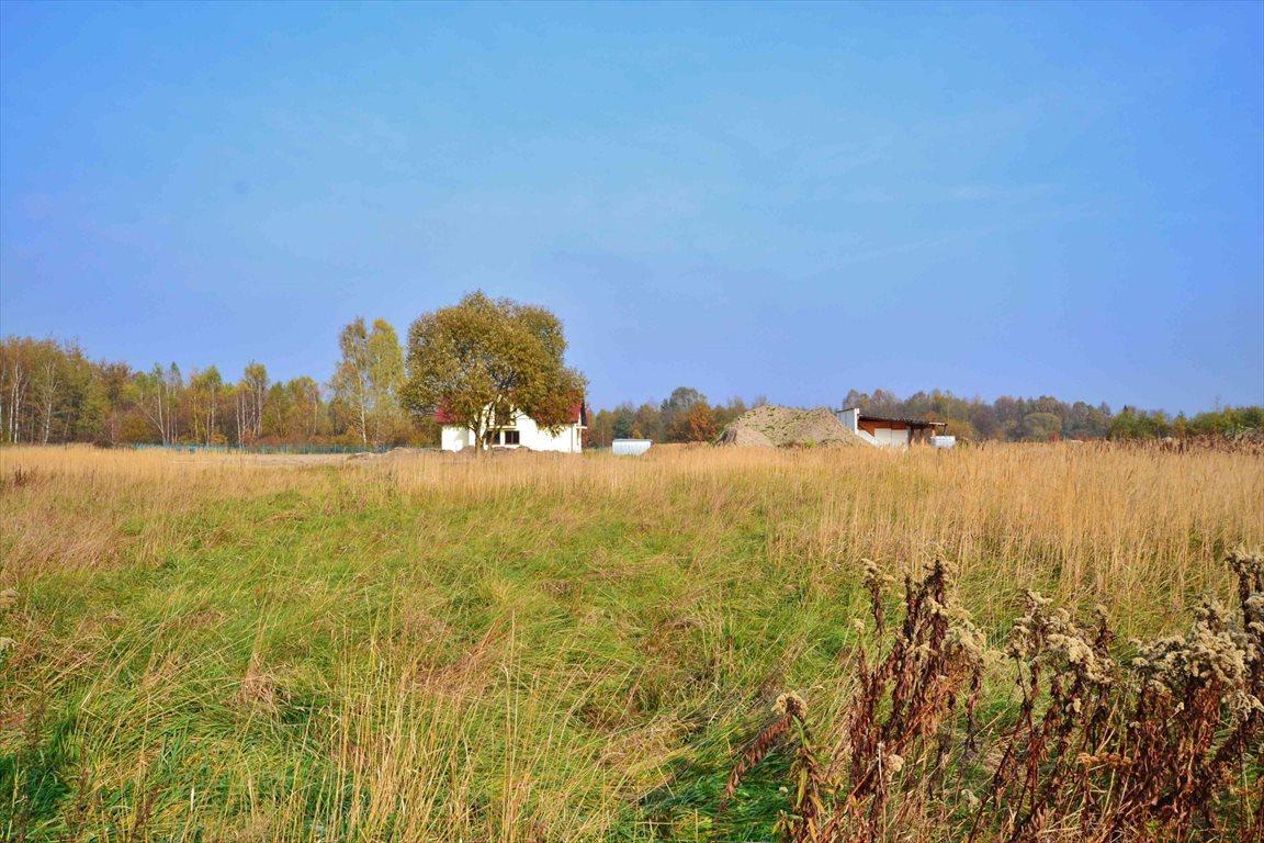 Działka budowlana na sprzedaż Brzeziny-Kolonia  1042m2 Foto 4