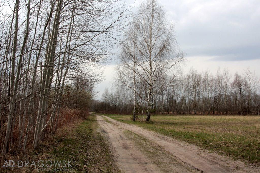 Działka siedliskowa na sprzedaż Kamionka  19445m2 Foto 3