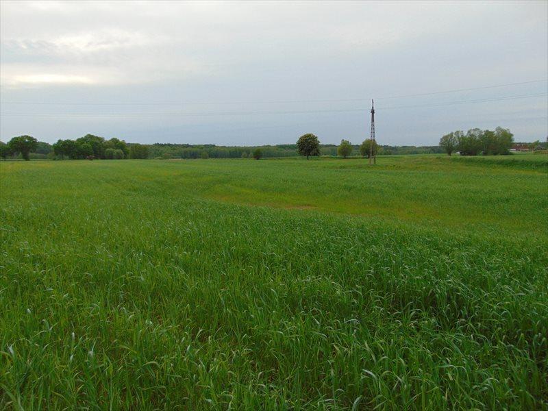 Działka rolna na sprzedaż Kępa Mała  15000m2 Foto 11
