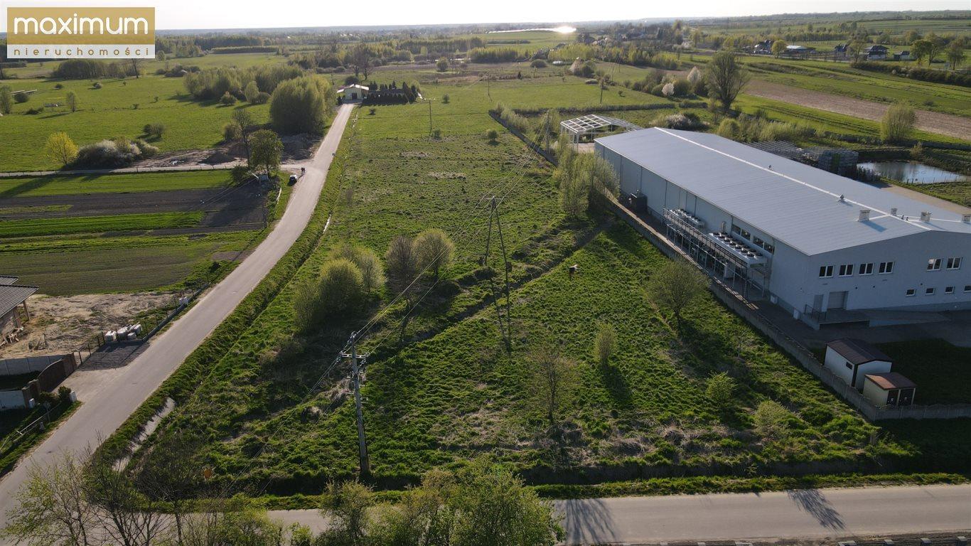 Działka budowlana na sprzedaż Frampol  10000m2 Foto 3