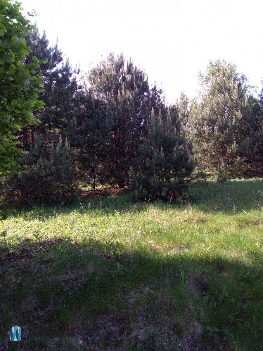 Działka siedliskowa na sprzedaż Molendy  51300m2 Foto 7