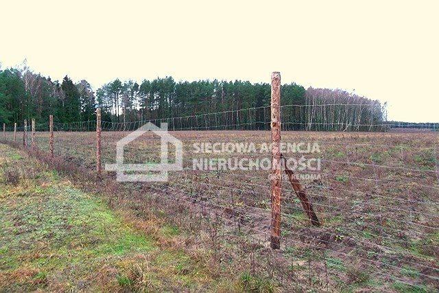 Działka leśna na sprzedaż Strzeczona  129577m2 Foto 8