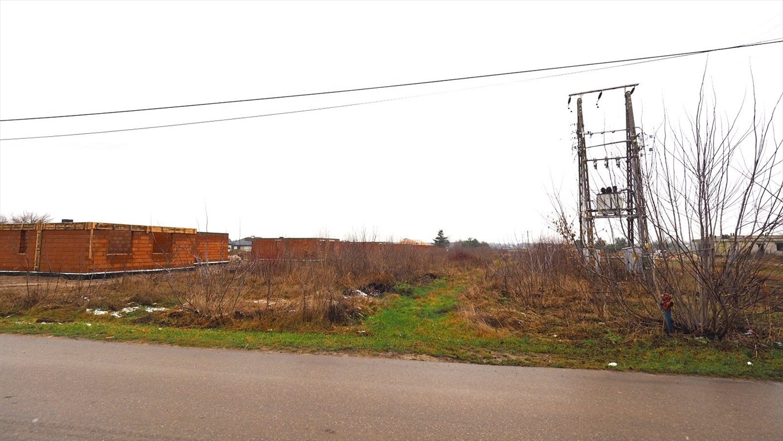 Działka budowlana na sprzedaż Jachranka, Jachranka  9227m2 Foto 7