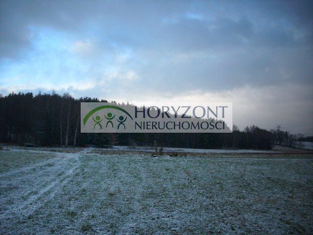 Działka przemysłowo-handlowa na sprzedaż Żukowo  28520m2 Foto 6