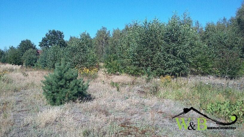 Działka rolna na sprzedaż Ożarowice, Kościuszki  8839m2 Foto 2